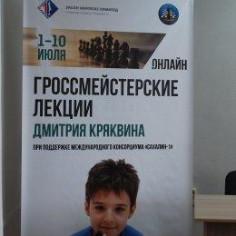 Международный гроссмейстер Дмитрий Кряквин прочитал курс лекций для островных шахматистов