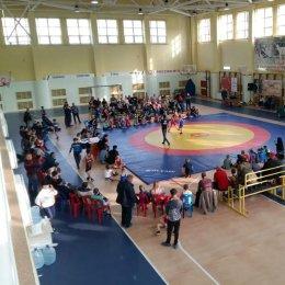 Почти 100 борцов приняли участие в «Кубке мэра» в Невельске