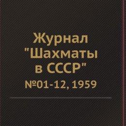 Страницы истории шахмат: Поронайск VS. Макаров