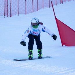 «Рождественская параллель» собрала более 70 сноубордистов