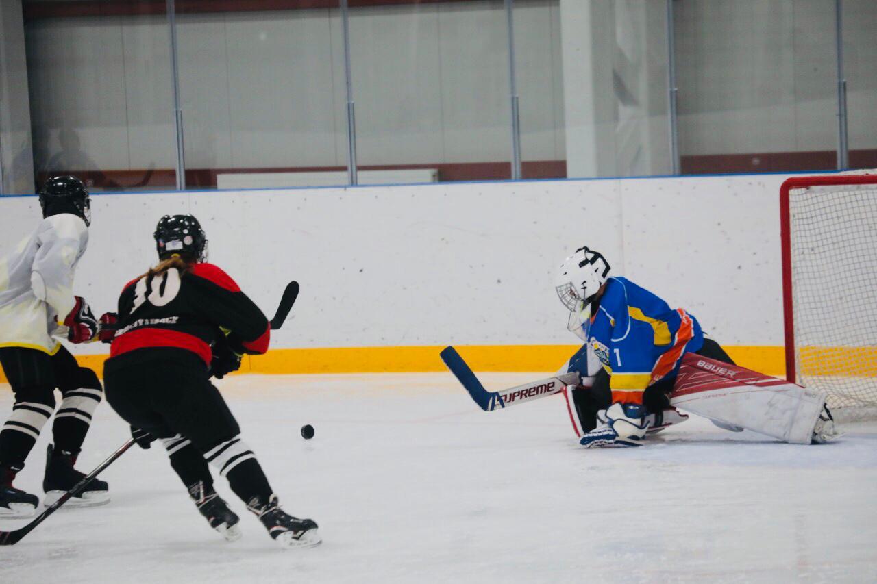 картинки хоккейный турнир конструкция здания была